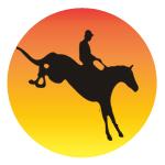 Egzamin na Odznaki Jeździeckie 18.12.2020
